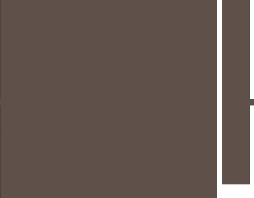 Cookie en Co - Hondenuitlaatservice Nuenen, Gerwen, Nederwetten en Lieshout